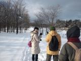 手稲前田森林公園ウオーキングオフ会~2011年12月11日