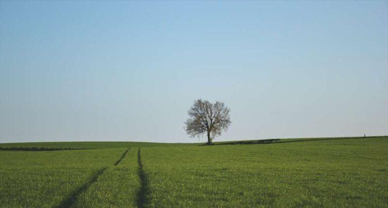孤独死防止サービス-イメージ