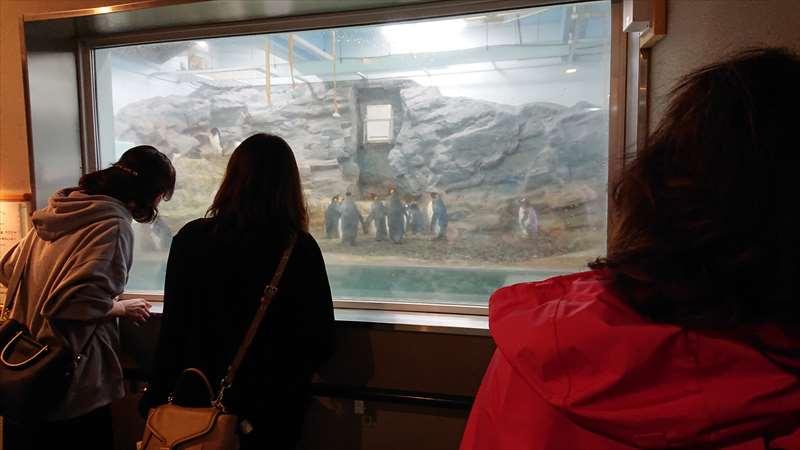 2021年10月9日 0073さんの旭山動物園と新子焼きを楽しむ会